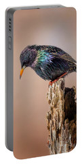 Backyard Birds European Starling Portable Battery Charger by Bill Wakeley