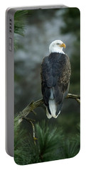 Bald Eagle In Tree Portable Battery Charger