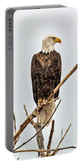 Bald Eagle On A Branch Portable Battery Charger