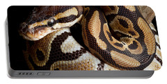 Portable Battery Charger featuring the photograph Ball Python Python Regius by David Kenny