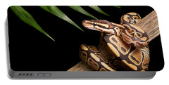 Ball Python Python Regius On Branch Portable Battery Charger