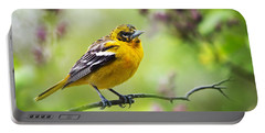 Baltimore Oriole II Portable Battery Charger