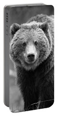 Banff Grizzly In Black And White Portable Battery Charger