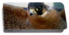 Barbary Falcon Wings Stretched Portable Battery Charger