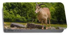 Barbary Sheep Portable Battery Charger
