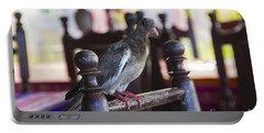 Bared Eye Pigeon Portable Battery Charger