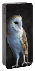 Portable Battery Charger featuring the photograph Barn Owl by Sharon Elliott