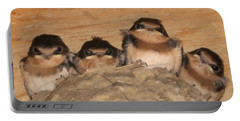 Barn Swallow Chicks 2 Portable Battery Charger