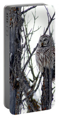 Barred Owl 2 Portable Battery Charger