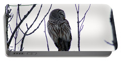 Barred Owl 3  Portable Battery Charger
