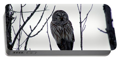 Barred Owl 4 Portable Battery Charger