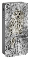 Barred Owl Snowy Day In The Forest Portable Battery Charger