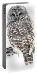 Barred Owl2 Portable Battery Charger by Cheryl Baxter