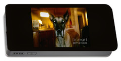 Portable Battery Charger featuring the photograph Batdog Duke by Kelly Awad
