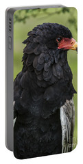 Bateleur 3 Portable Battery Charger by Arterra Picture Library