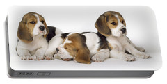 Beagle Puppies, Row Of Three, Second Portable Battery Charger