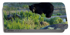 Bear 3 Portable Battery Charger