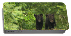 Portable Battery Charger featuring the photograph Bear Buddies by Coby Cooper