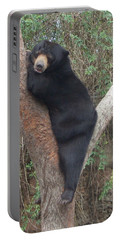 Bear In Tree   Portable Battery Charger