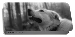 Bear Tooth Not Camera Shy Portable Battery Charger