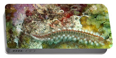 Portable Battery Charger featuring the photograph Bearded Fireworm On Rainbow Coral by Amy McDaniel