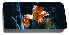 Portable Battery Charger featuring the photograph Gorgeous Tulip by Phyllis Kaltenbach