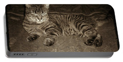 Beautiful Tabby Cat Portable Battery Charger by Absinthe Art By Michelle LeAnn Scott