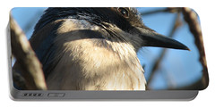 Beautiful Western Scrub Jay Portable Battery Charger