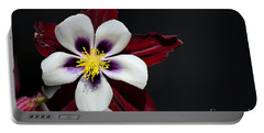 Beautiful White Petal Yellow Stamen Purple Shades Aquilegia Columbine Flower Portable Battery Charger
