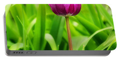 Beauty At A Glance- Purple Gems- Purple Tulips Rhode Island Tulips Purple Flower Portable Battery Charger by Lourry Legarde