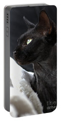 Beauty Of The Rex Cat Portable Battery Charger