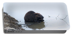 Beaver In The Shallows Portable Battery Charger by Chris Flees