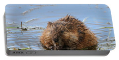 Beaver Portrait Portable Battery Charger by Dan Sproul