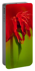 Bee Balm Abstract Portable Battery Charger by Jani Freimann