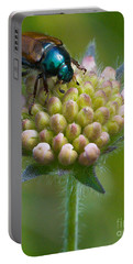 Beetle Sitting On Flower Portable Battery Charger