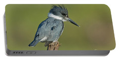 Belted Kingfisher Portable Battery Charger by Anthony Mercieca