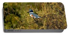 Belted Kingfisher Female Portable Battery Charger by Anthony Mercieca