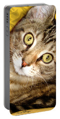 Bengal Cat Kitten Portable Battery Charger