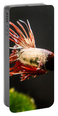 Portable Battery Charger featuring the photograph Betta Fish 3 by Lisa Brandel