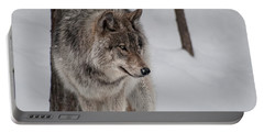 Portable Battery Charger featuring the photograph Big Bad Wolf by Bianca Nadeau