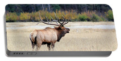 Big Colorado Bull Portable Battery Charger