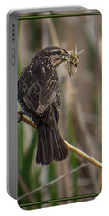 Portable Battery Charger featuring the photograph Big Dinner For Female Red Winged Blackbird II by Patti Deters