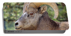 Big Horn Portable Battery Charger by Lynn Sprowl