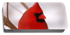 Portable Battery Charger featuring the photograph Big Red  Cardinal Bird In Snow by Peggy Franz