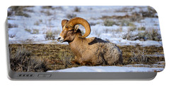 Portable Battery Charger featuring the photograph Bighorn Sheep by Greg Norrell