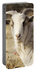 Billy Goat Portable Battery Charger