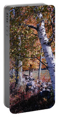 Portable Battery Charger featuring the photograph Birches by Mim White