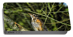 Bird - Baby Robin Portable Battery Charger by Paul Ward