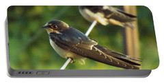 Birds On A Wire Portable Battery Charger by Caryl J Bohn