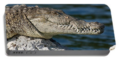 Portable Battery Charger featuring the photograph Biscayne National Park Florida American Crocodile by Paul Fearn